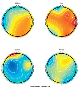 EEG Scalp Maps based on Structural Engineering Task